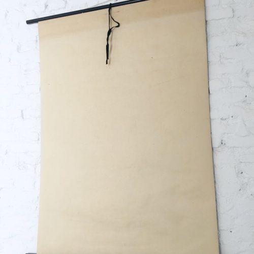 AVELLANO - Lámina botánica escolar enrollable. Jung - Koch - Quentell, vintage 50S-70s.